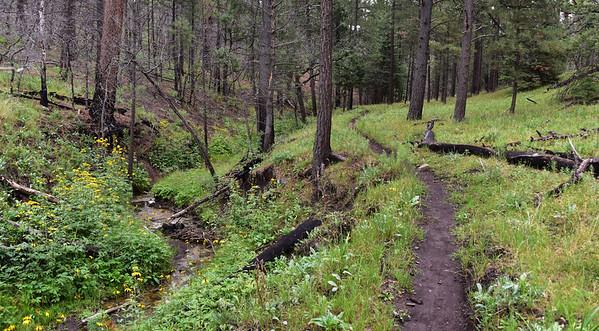 NEA_9478-Argentina Trail