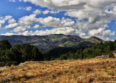 NEA_0309-7x5-White Mtn Wilderness