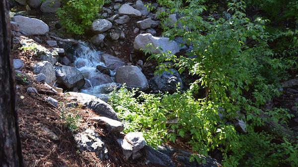 NEA_0260-Trail T46
