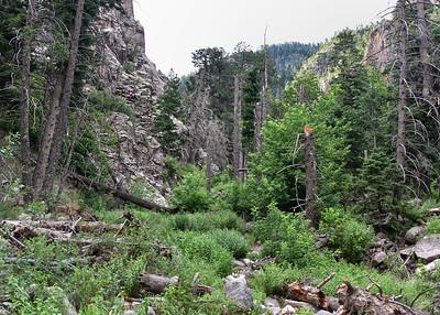 NEA_7417-7x5-Three Rivers Trail