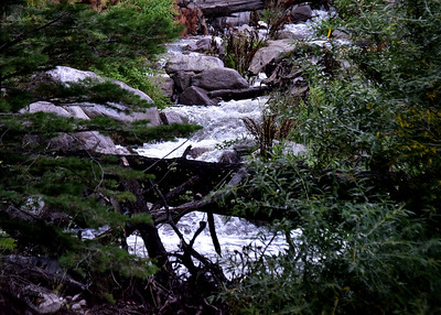 NEA_0209-7x5-Three Rivers