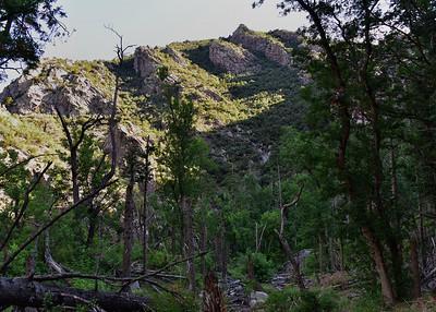 NEA_7422-7x5-Three Rivers Trail