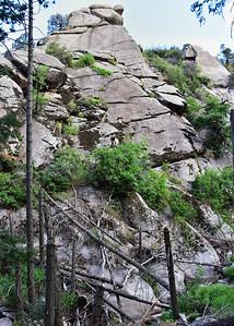 NEA_7410-5x7-Three Rivers Trail