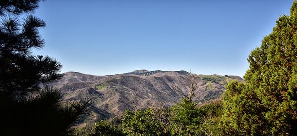 NEA_6146-Sierra Blanca from Nogal trail