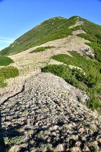 NEA_0513-Nogal Peak