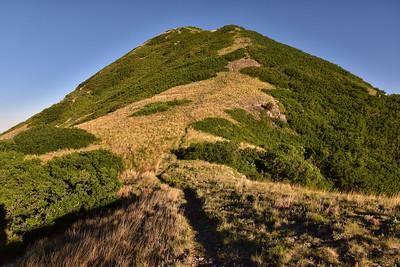NEA_6073-Nogal Peak Trail