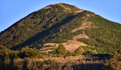 NEA_6004-Elk-Nogal Peak trail