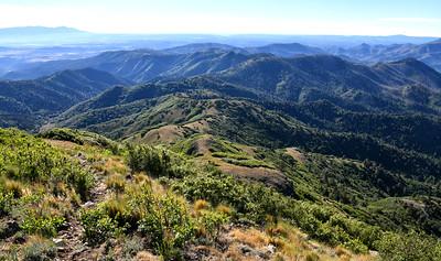 NEA_0525-From Nogal Peak Trail