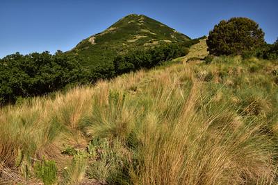 NEA_6141-Nogal Peak from Trail