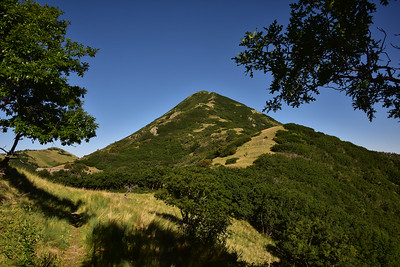 NEA_6143-Nogal Peak from Trail