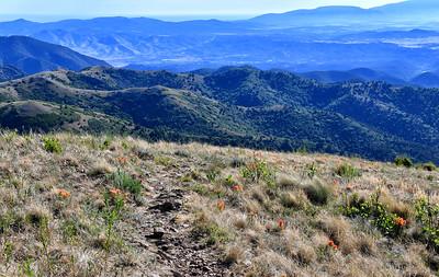 NEA_0528-From Nogal Peak Trail