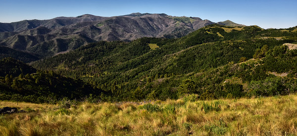 NEA_6139-Sierra Blanca from Nogal Trail