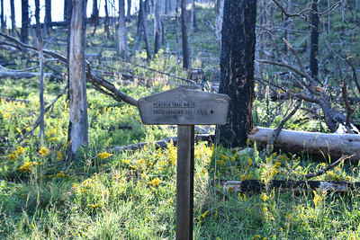 NEA_1311-Trail Sign