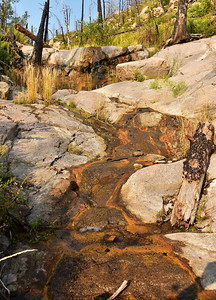 NEA_7126-Mills Canyon