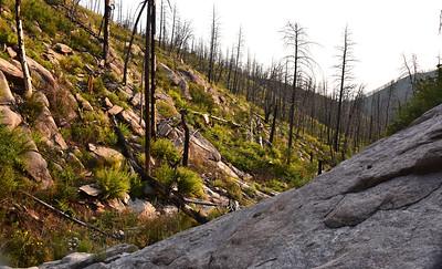 NEA_7093-Mills Canyon