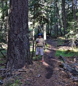 NEA_7536-LG Tree-Rim Trail