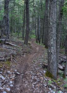 NEA_7525-5x7-Rim Trail