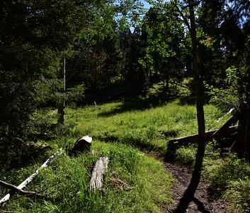 NEA_7539-Rim Trail