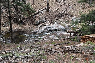 NEA_5835-Argentina Creek