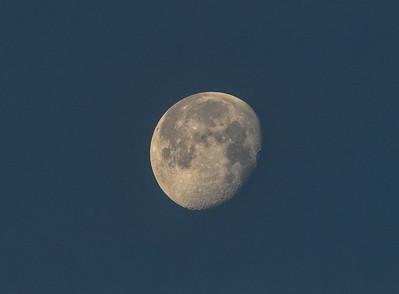 NEA_8434-Moon