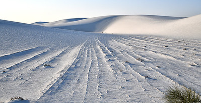 NEA_0610-White Sands