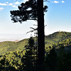 NEA_7528-Tularosa Basin from Rim Trail