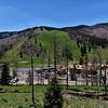 NEA_0486-7x5-Ski Apache