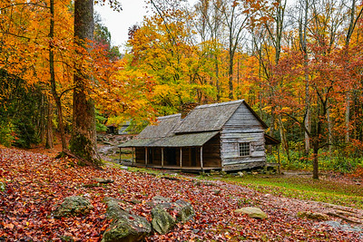 Autumn At The Ogle Place