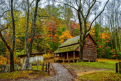 Fall At The Tipton Cabin