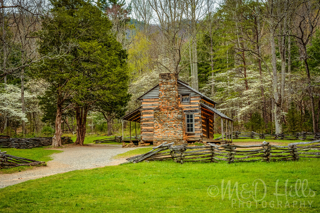 The Oliver Cabin In Spring