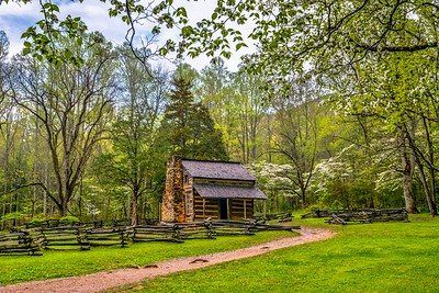 Spring Morning At The Oliver Cabin