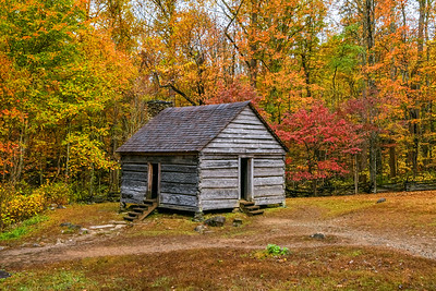 Fall Peaks At The Alex Cole Cabin