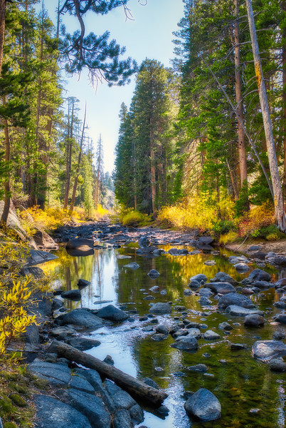 The West Fork of the Carson River