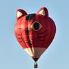 NEA_7549-Balloon