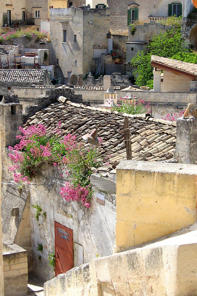 IT 11 Matera Flowers on Roof