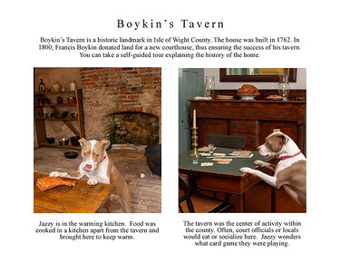 Jazzy Explores Smithfield page 8 Bokins Tav