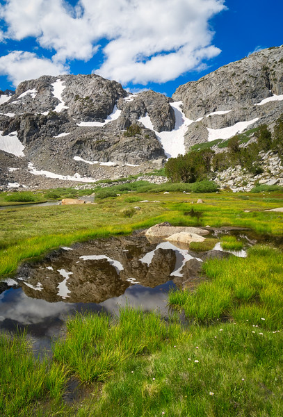 Reflections in Sam Mack Meadow (Vertical)
