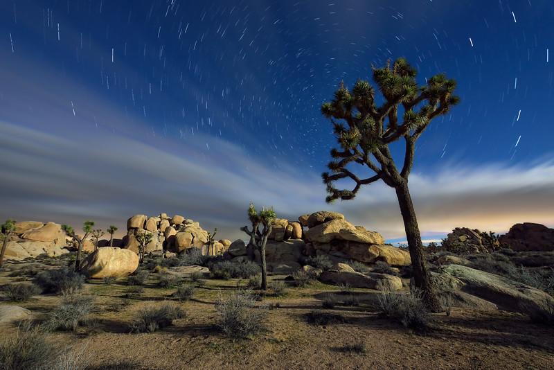 When The Light Goes Down In The Desert
