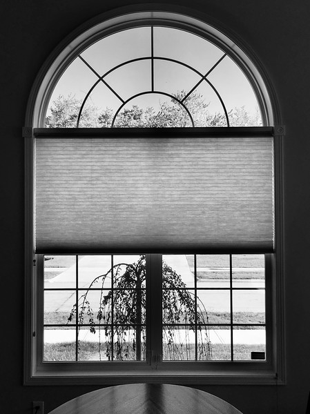 Looking Out from Inside in Black and White