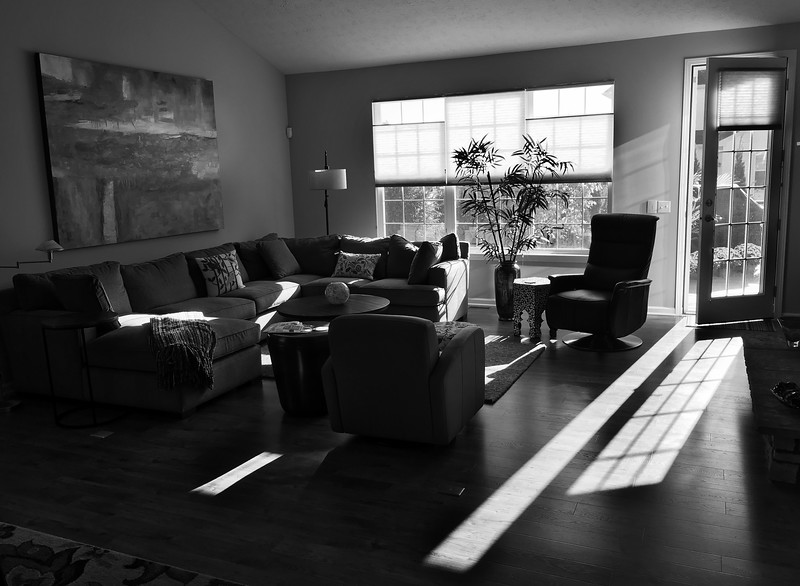 Light and Shadow Play in Black and White