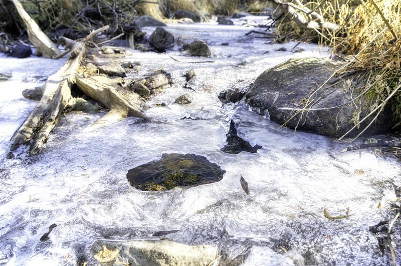 A frozen creek near Dardanelles Lake