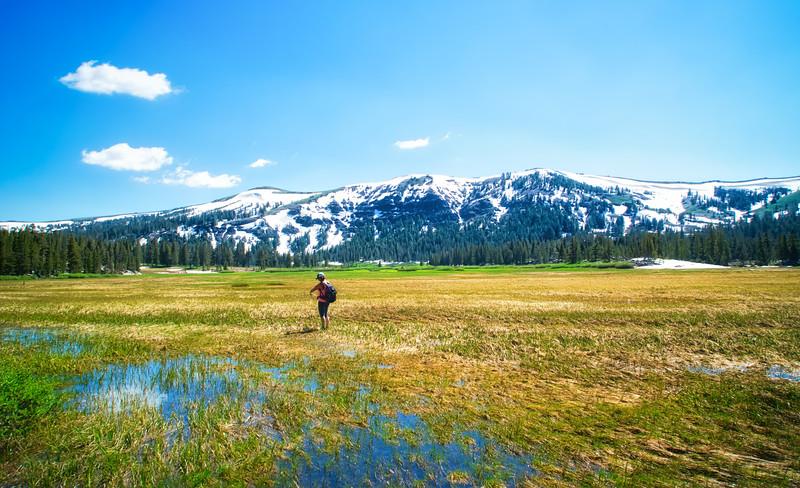 Kristie in Meiss Meadow
