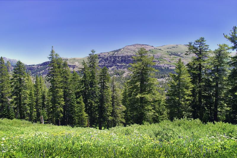 Steven's Peak and Red Peak