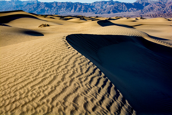 Golden Glow, Mesquite Sand Dunes, Death Valley National Park_
