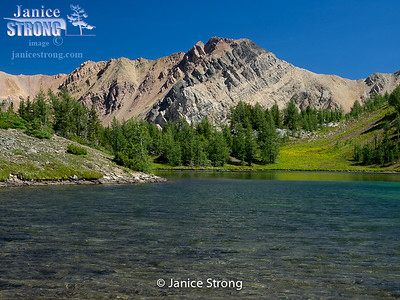 Brewer Tarn in the High Purcell Mountains