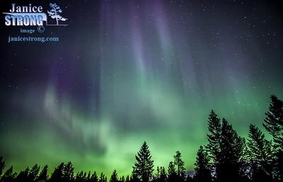 Janice Strong-Aurora-9126