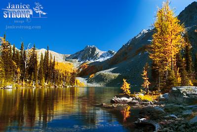 Tanglefoot Lake in the BC Rockies 306-3155.