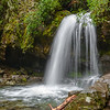 Grotto Falls Portrait