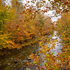 Fall On Little Pigeon River