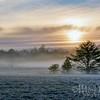 Frozen Dawn